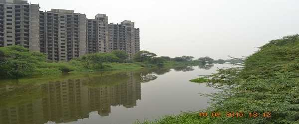 Concrete buildings choking the green lungs of towns and cities. Photo Courtesy: INTACH