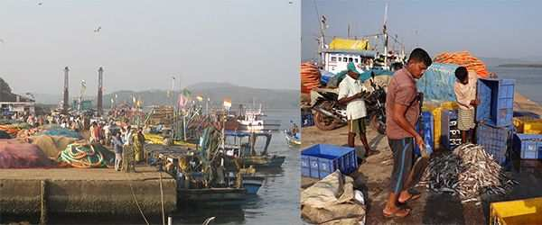 (L-R) Tadri Port (photo: mapio.net); Tadri fishing harbor which provides sustenance to a large fishing community (photo: pixabay.com)