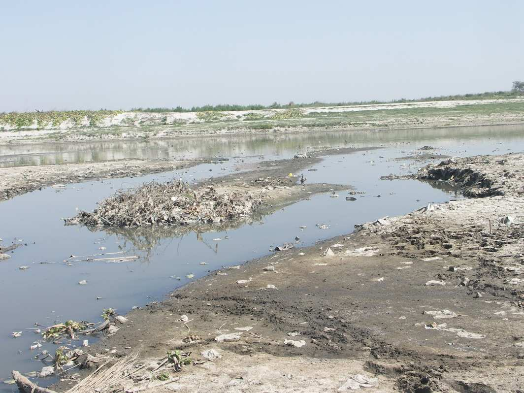Treated waste water (mixture of sewage and tannery effluent) which can be used for irrigation. Photo: Rakesh Jaiswal