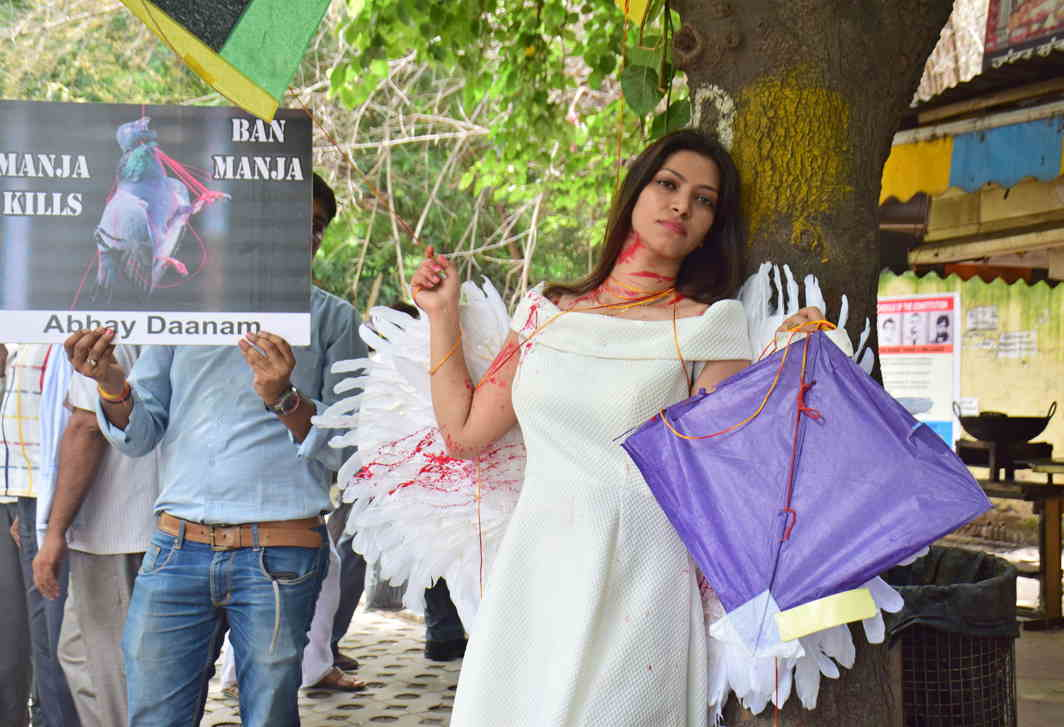 SPARE A THOUGHT: A PETA activist dressed as a bird urges people not to use manjha in an initiative organised by Bird Care Shelter and Charitable Hospital, in New Delhi, UNI