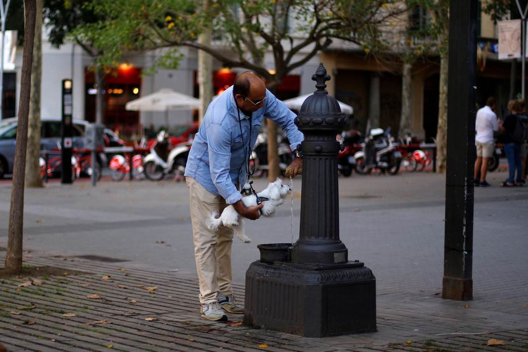 STILL RUNNING: A man helps a dog drink water in a street in Barcelona, Spain, Reuters/UNI