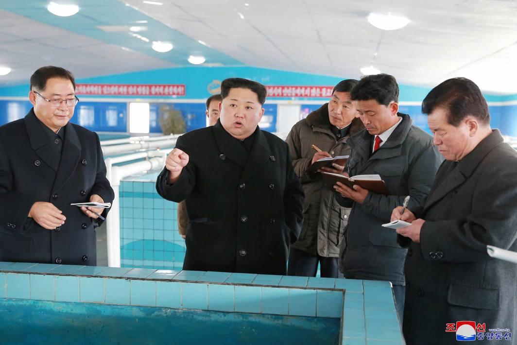 WHO'S BOSS? North Korean leader Kim Jong Un visits the newly-built Suncheon Catfish Factory in Pyongyang, KCNA/Reuters/UNI