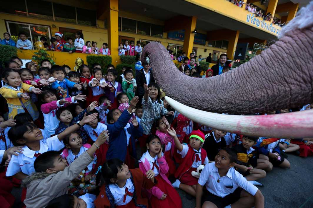 ANIMAL AVATAR: An elephant dressed in a Santa Claus costume offers a doll to students during Christmas celebrations at Jirasart School in Ayutthaya, Thailand, Reuters/UNI