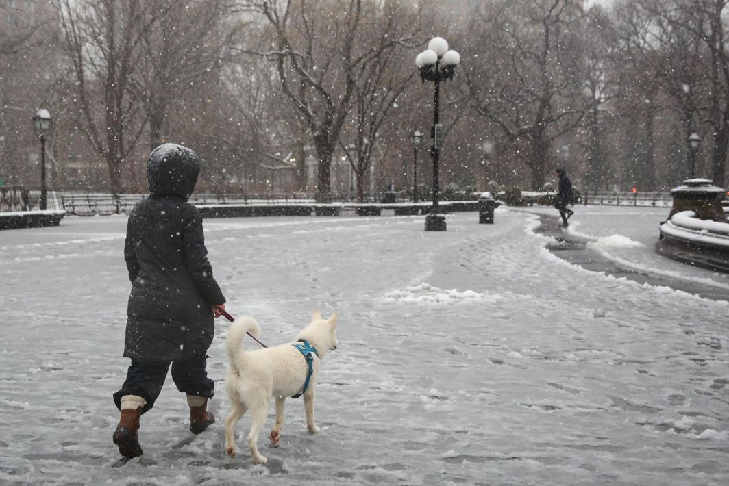 TESTY WEATHER: A woman walks her dog as snow falls in Washington Square Park, in New York City, New York, US, Reuters/UNI