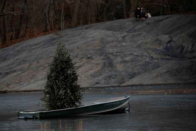 NEW YORK, DEC 26:- People sit on a rock behind a Christmas tree on a frozen lake on Christmas Day at Central Park in Manhattan, New York City, U.S., December 25, 2016. REUTERS-6R